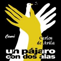 """Paquete Standard C: 3 Cds Álbum """"Un pájaro con dos alas"""""""